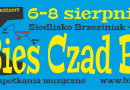 Bies Czad Blues 2015 – baner