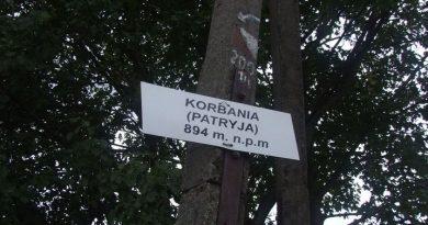 Lopienka_Korbania_2015