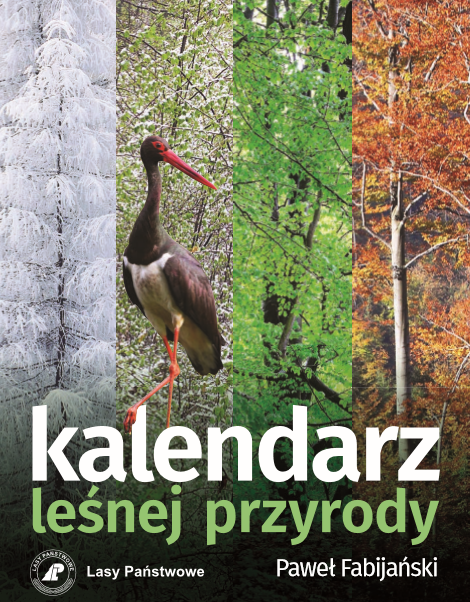 Kalendarz lesnej_przyrody_2